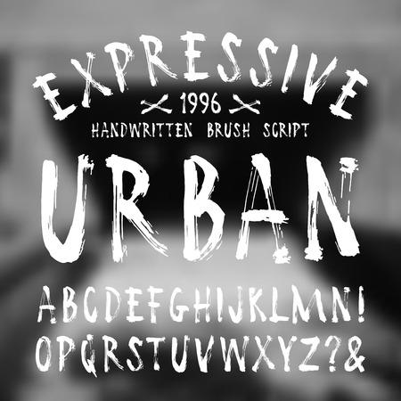 Vector handwritten brush font. White print on blurred background
