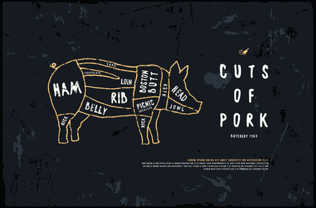 Stock vector pork cuts diagram in the style of handmade graphics. Illustration with rough texture. Color print on black background.