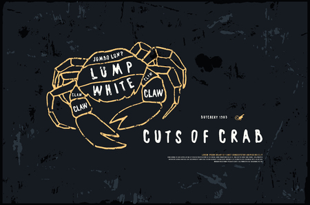 Stock vector crab cuts diagram in the style of handmade graphics. Illustration with rough texture. Color print on black background