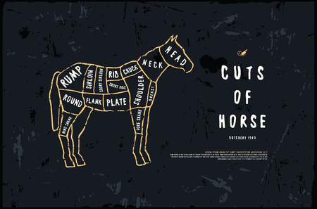 Stock vector horse cuts diagram in the style of handmade graphics. Illustration with rough texture. Color print on black background