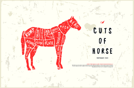 Stock vector horse cuts diagram in the style of handmade graphics. Illustration with rough texture. Color print on white background Ilustração