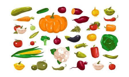 Stock vector illustration of vegetables. Design in flat style. Isolated on white background