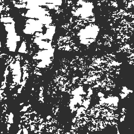 Bark tree texture for background on emblem or overlays on photo. Black and white print