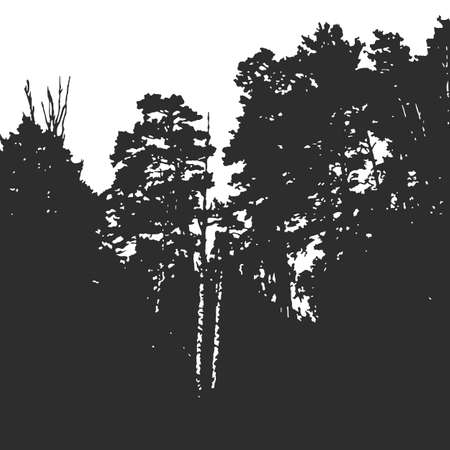 Wall forest texture for background on emblem or overlays on photo. Black and white print