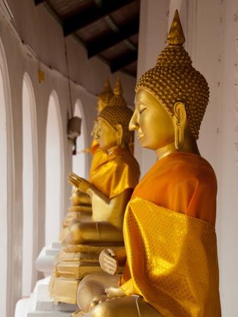 Buddha Stock Photo - 16635281
