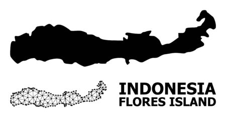 Solid and mesh vector map of Indonesia - Flores Island. Wire carcass flat triangular mesh in eps vector format, geographic templates for economics purposes.