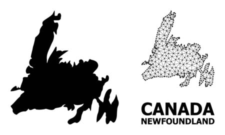 Solid and mesh vector map of Newfoundland Island. Wire frame flat polygonal mesh in vector format, geographic models for patriotic illustrations. Illustrations are isolated on a white background. Banque d'images - 132607667
