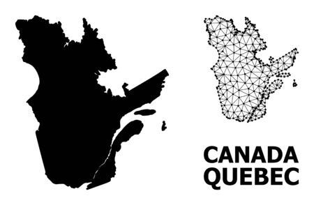 Solid and mesh vector map of Quebec Province. Wire frame 2D triangular mesh in vector format, geographic templates for educational illustrations. Illustrations are isolated on a white background.  イラスト・ベクター素材