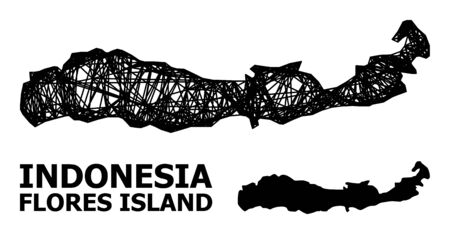Net vector map of Indonesia - Flores Island. Wire carcass 2D network in vector format, geographic template for economics purposes.