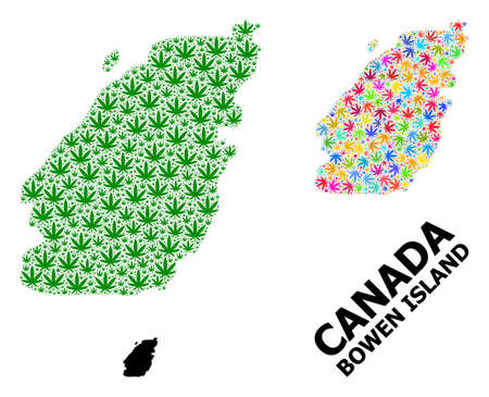 Vector cannabis mosaic and solid map of Bowen Island. Map of Bowen Island vector mosaic for cannabis legalize campaign. Map of Bowen Island is designed from green and colored cannabis leaves.