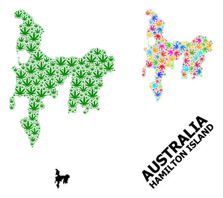 Vector marijuana mosaic and solid map of Hamilton Island. Map of Hamilton Island vector mosaic for weed legalize campaign. Map of Hamilton Island is created from green and bright weed leaves. Ilustração