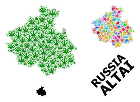 Vector marijuana mosaic and solid map of Altai Republic. Map of Altai Republic vector mosaic for marijuana legalize campaign. Map of Altai Republic is formed with green and colored hemp leaves.