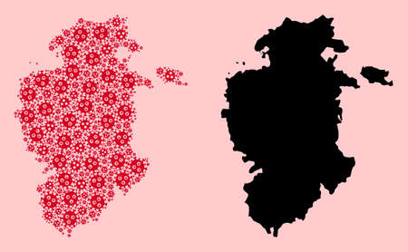 Vector pandemic virus mosaic and solid map of Burgos Province. Map of Burgos Province vector mosaic for geographic campaigns and promotion. Map of Burgos Province is formed from red virus items.