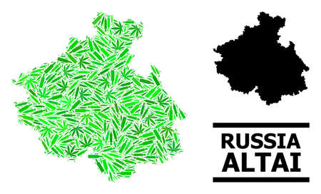 Drugs mosaic and solid map of Altai Republic. Vector map of Altai Republic is done of randomized syringes, dope and alcoholic bottles.