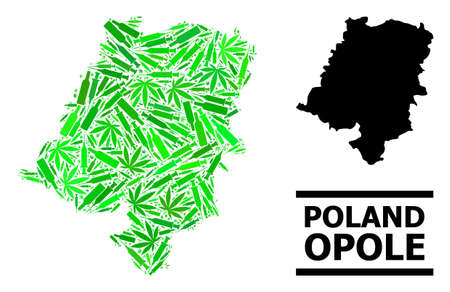 Addiction mosaic and solid map of Opole Province. Vector map of Opole Province is created with random injection needles, weed and wine bottles.
