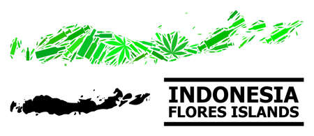 Drugs mosaic and solid map of Indonesia - Flores Islands. Vector map of Indonesia - Flores Islands is designed with randomized vaccine symbols, cannabis and alcoholic bottles.