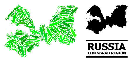 Drugs mosaic and solid map of Leningrad Region. Vector map of Leningrad Region is organized with random syringes, narcotic and alcohol bottles.