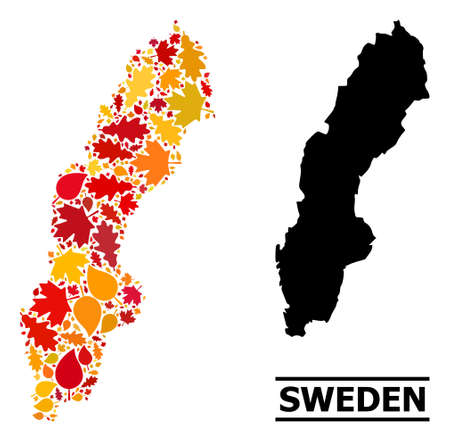 Mosaic autumn leaves and solid map of Sweden. Vector map of Sweden is shaped with scattered autumn maple and oak leaves. Abstract territorial plan in bright gold, red, brown colors for map of Sweden. 向量圖像