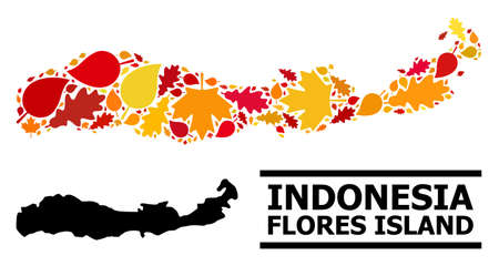 Mosaic autumn leaves and solid map of Indonesia - Flores Island. Vector map of Indonesia - Flores Island is done with scattered autumn maple and oak leaves. Abstract territorial plan in bright gold, 向量圖像
