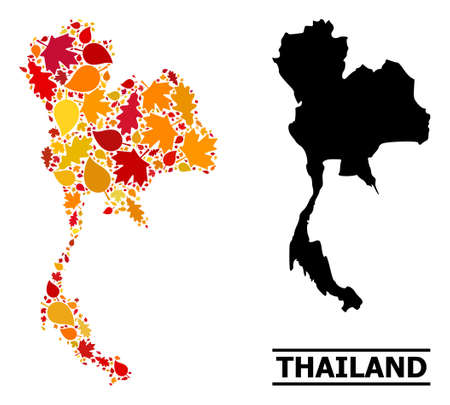 Mosaic autumn leaves and usual map of Thailand. Vector map of Thailand is organized of randomized autumn maple and oak leaves. Abstract territory scheme in bright gold, red,