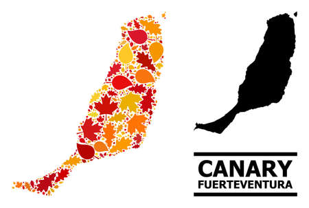 Mosaic autumn leaves and usual map of Fuerteventura Island. Vector map of Fuerteventura Island is done from random autumn maple and oak leaves. Abstract territory scheme in bright gold, red, Illustration