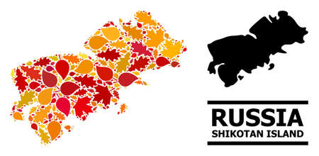 Mosaic autumn leaves and solid map of Shikotan Island. Vector map of Shikotan Island is organized from randomized autumn maple and oak leaves. Abstract territorial scheme in bright gold, red, Ilustración de vector