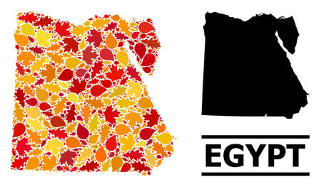 Mosaic autumn leaves and usual map of Egypt. Vector map of Egypt is formed with randomized autumn maple and oak leaves. Abstract territorial scheme in bright gold, red, brown colors for map of Egypt. 向量圖像