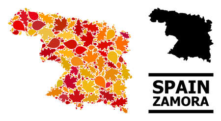 Mosaic autumn leaves and solid map of Zamora Province. Vector map of Zamora Province is done from randomized autumn maple and oak leaves. Abstract territory scheme in bright gold, red, Ilustración de vector