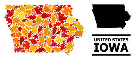 Mosaic autumn leaves and solid map of Iowa State. Vector map of Iowa State is composed from randomized autumn maple and oak leaves. Abstract geographic plan in bright gold, red,