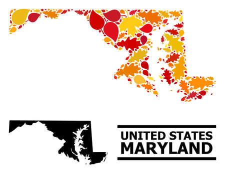 Mosaic autumn leaves and usual map of Maryland State. Vector map of Maryland State is created of random autumn maple and oak leaves. Abstract territory plan in bright gold, red,