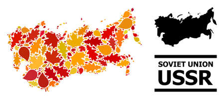Mosaic autumn leaves and solid map of USSR. Vector map of USSR is composed from random autumn maple and oak leaves. Abstract territorial plan in bright gold, red, brown colors for map of USSR. 向量圖像