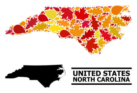 Mosaic autumn leaves and usual map of North Carolina State. Vector map of North Carolina State is organized from scattered autumn maple and oak leaves. Abstract territory scheme in bright gold, red,