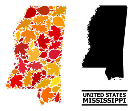 Mosaic autumn leaves and usual map of Mississippi State. Map of Mississippi State is shaped of random autumn maple and oak leaves. Abstract geographic plan in bright gold, red