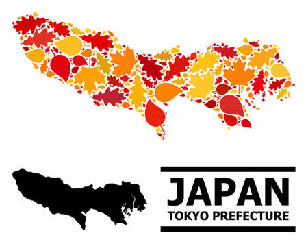 Mosaic autumn leaves and usual map of Tokyo Prefecture. Map of Tokyo Prefecture is shaped of random autumn maple and oak leaves. Abstract territory scheme in bright gold, red