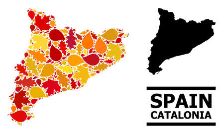 Mosaic autumn leaves and usual map of Catalonia. Map of Catalonia is formed with randomized autumn maple and oak leaves. Abstract geographic plan in bright gold, red