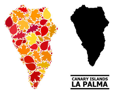 Mosaic autumn leaves and solid map of La Palma Island. Map of La Palma Island is constructed with randomized autumn maple and oak leaves. Abstract territorial plan in bright gold, red Illustration