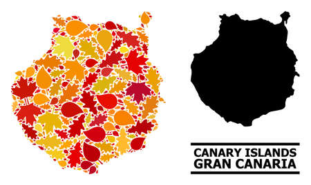 Mosaic autumn leaves and solid map of Gran Canaria. Map of Gran Canaria is designed with random autumn maple and oak leaves. Abstract territory scheme in bright gold, red Illustration