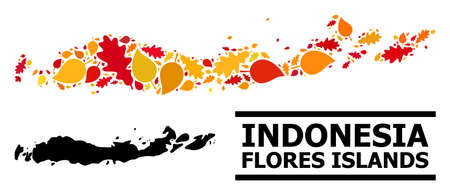 Mosaic autumn leaves and solid map of Indonesia - Flores Islands. Map of Indonesia - Flores Islands is made with scattered autumn maple and oak leaves. 向量圖像