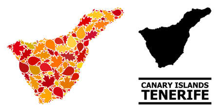 Mosaic autumn leaves and solid map of Tenerife Island. Map of Tenerife Island is designed from scattered autumn maple and oak leaves. Abstract territorial plan in bright gold, red