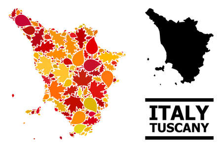 Mosaic autumn leaves and solid map of Tuscany region. Vector map of Tuscany region is done of scattered autumn maple and oak leaves. Abstract geographic plan in bright gold, red, 免版税图像 - 156534110