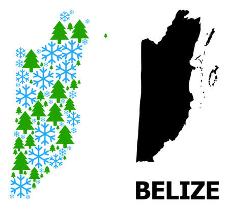 Vector mosaic map of Belize organized for New Year, Christmas, and winter. Mosaic map of Belize is designed from snowflakes and fir trees.