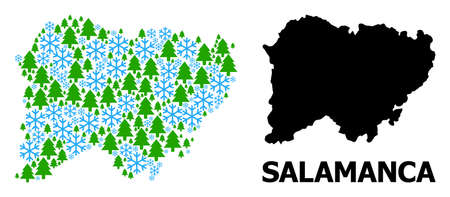 Vector mosaic map of Salamanca Province organized for New Year, Christmas, and winter. Mosaic map of Salamanca Province is organized from snow flakes and fir trees.
