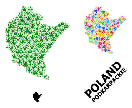 Vector marijuana mosaic and solid map of Podkarpackie Province. Map of Podkarpackie Province vector mosaic for drug legalize campaign.