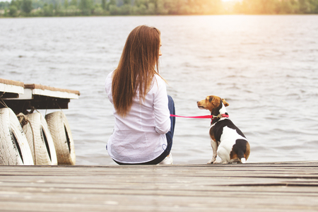 Long conversations with lovely pet. Rear view of beautiful young woman in casual clothing looking at each other with her dog while sitting on pier.