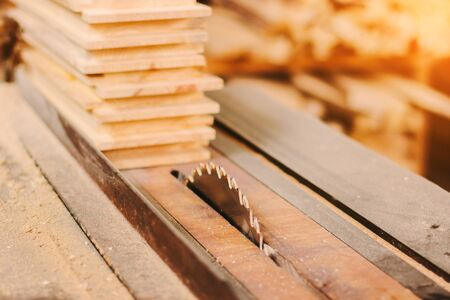 Closeup of professional power sawing machine for cutting wood boards and planks at woodworking production workshop. Sharp blade of electrical circular saw at sawmill. Carpenter workplace, joinery