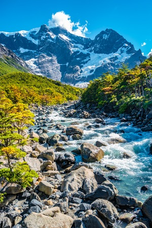 View of Torres del Paine National Park, its forests, mountings and glacial river at Autumn, Patagonia, Chile Banque d'images - 119148725