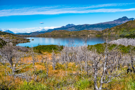 Panoramic view of Torres del Paine National Park, its forests, lagoon and glaciers at Autumn, Patagonia, Chile Banque d'images - 119148727