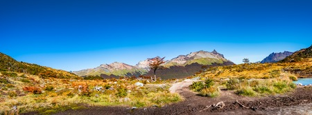 Beautiful landscape of lenga forest, mountains at Tierra del Fuego National Park, Patagonia, autumn Banque d'images - 119148774