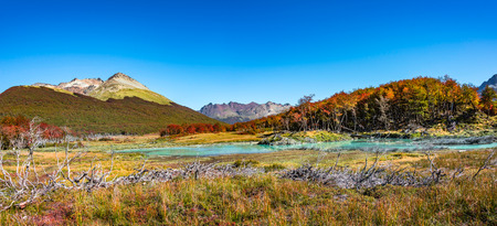 Beautiful landscape of lenga forest, mountains at Tierra del Fuego National Park, Patagonia, autumn Banque d'images - 119148788