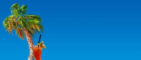 Banner concept with drunk colorful date palm tree and tropical cocktail supporting each other at blue gradient background with copy space for text